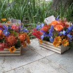 flower_hampers_gifts